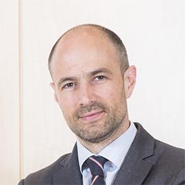 David Palmer Fernandez